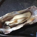 みるく牡蠣