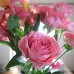 家にあった花
